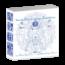 Sacred Body Language Translations™ (12 DVDs)