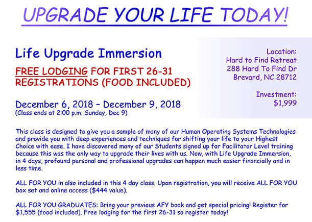 Life Upgrade Immersion